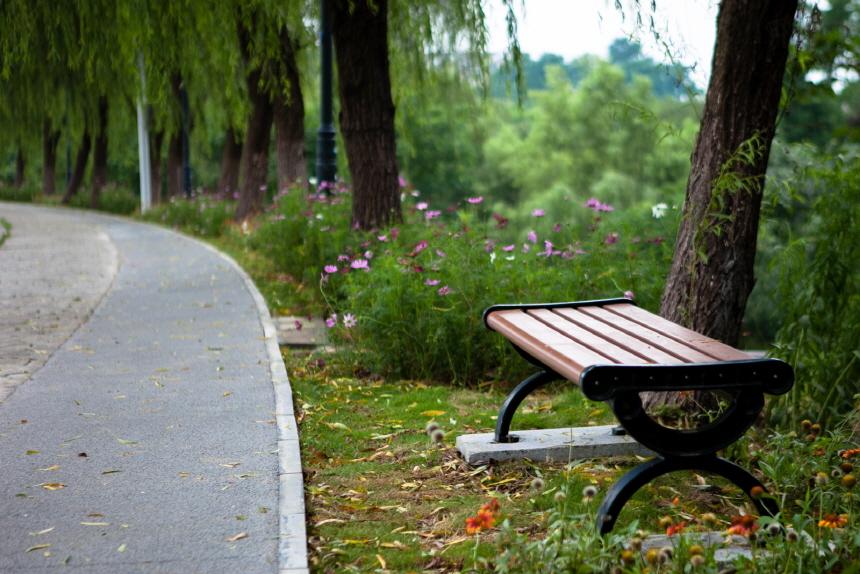 meihuashan_IMG_6613.jpg